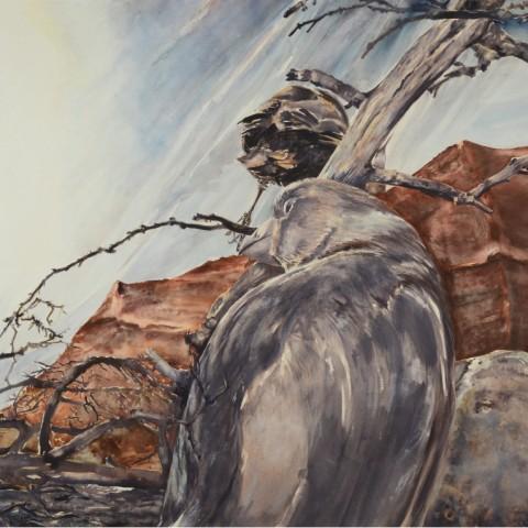Katarina-Ivanišin-Kardum-Still-Landscape-Series-V-2016-Bez-naziva-akvarel-na-papiru-116x153cm