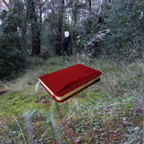 Crvena knjiga