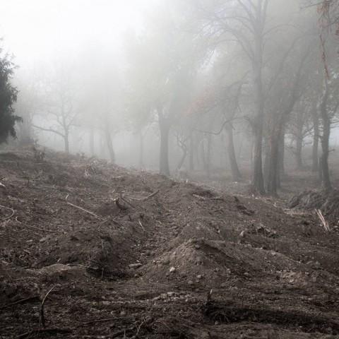 Ovčara, vojska raskopava teren u potrazi za šestim autobusom ljudi, Vukovar (Domagoj Burilović, 2019.)