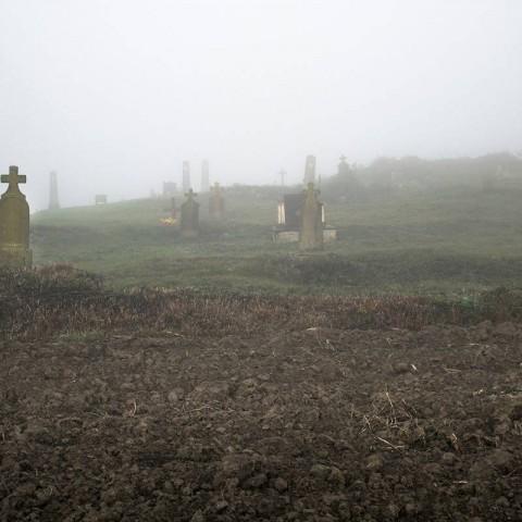 Staro pravoslavno groblje, Ilača (Domagoj Burilović, 2019.)