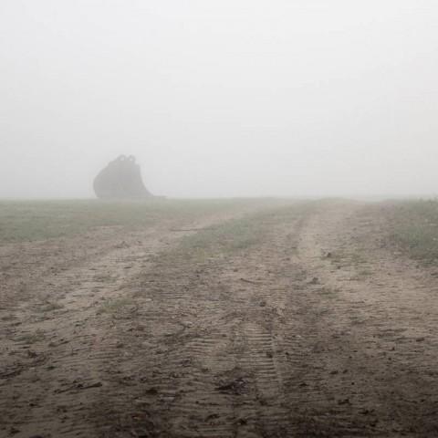 Ovčara - masovna grobnica, iskopna korpa bagera koji pretražuje teren za još jednom mogućom grobnicom, Vukovar (Domagoj Burilović, 2019.)