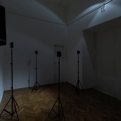 Petra Mrša It's so calm, no one around, 2020. HD video, 5', b/w, sound