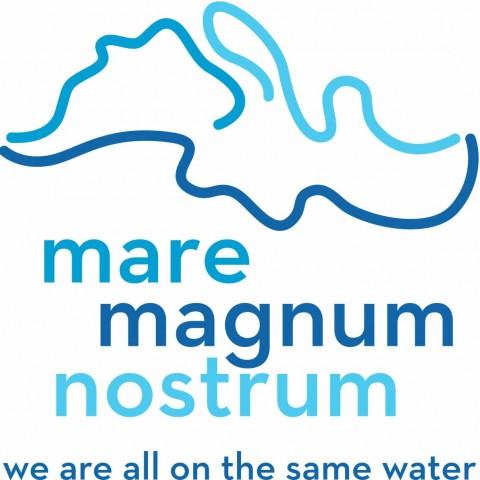 Logo MMN english