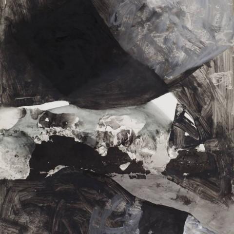 Dvanaest crno bijelo sivih